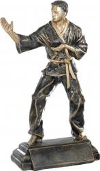Trofeu Statueta Karate Personalizat din Rasina 25 cm