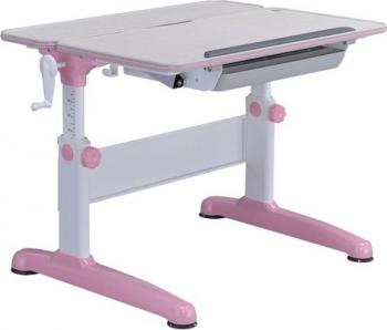 Birou pentru copii ergonomic si reglabil SingBee SBS-601-PK Birouri copii