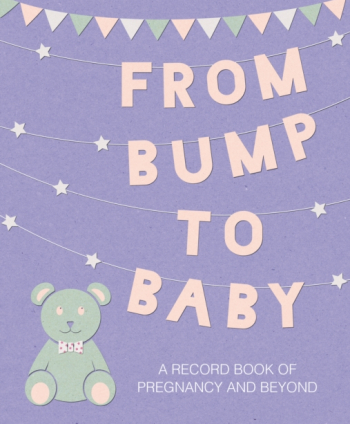 From Bump to Baby A Record Book of Pregnancy and Beyond