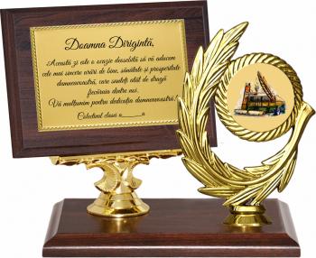 Trofeu Diriginta/Profesoara - 2 Cupe, trofee si medalii