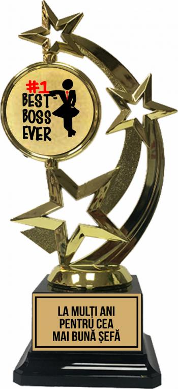 Trofeu Cea Mai Buna Sefa Cupe, trofee si medalii
