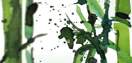Panou bucatarie protectie plita aragaz antistropire print UV model Bambus Verde 600x600 mm Placi decorative