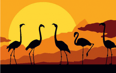 Panou bucatarie protectie plita aragaz antistropire print UV model Flamingo la Apus 600x600 mm Placi decorative