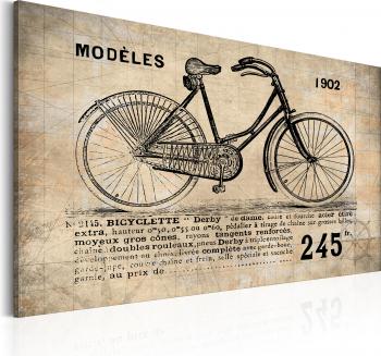 Tablou canvas - N 1245 Bicicleta - 90 x 60 cm